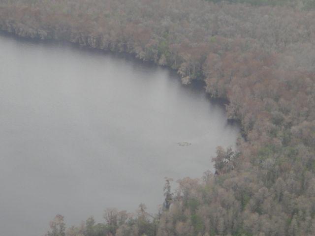 florida swampland