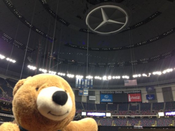 jeff noel's traveling teddy bear in the Mercedes Benz Super Dome