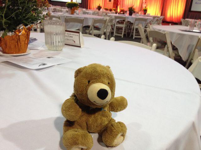 A special Teddy Bear