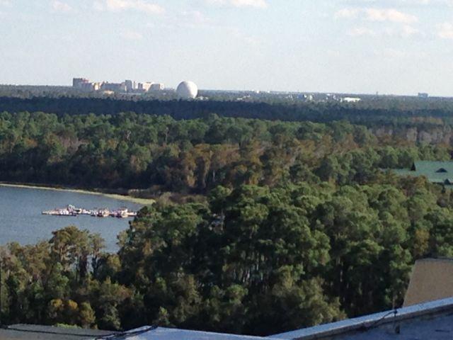 Disney landscape
