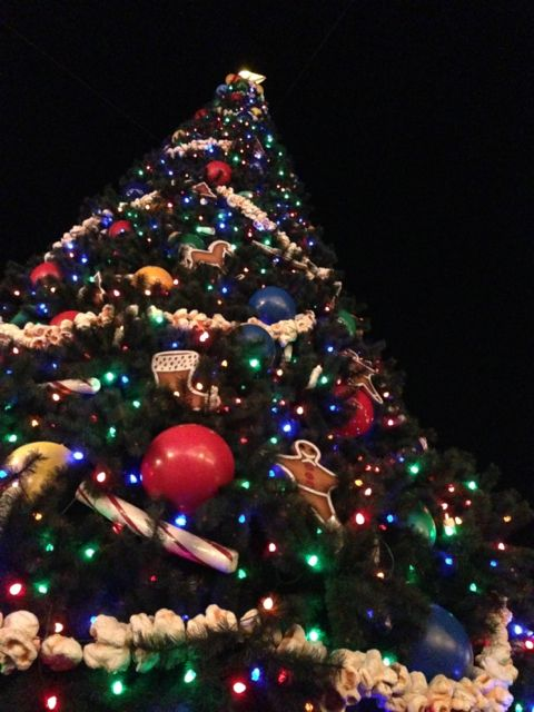 Disney's Magic Kingdom Christmas Tree 2012 at night