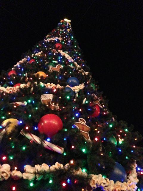 Disney's Magic Kingdom Christmas Tree 2012 at night