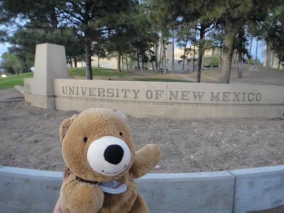 Teddy Bear at University of New Mexico entrance