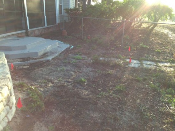 Neglected Florida homeowner landscape