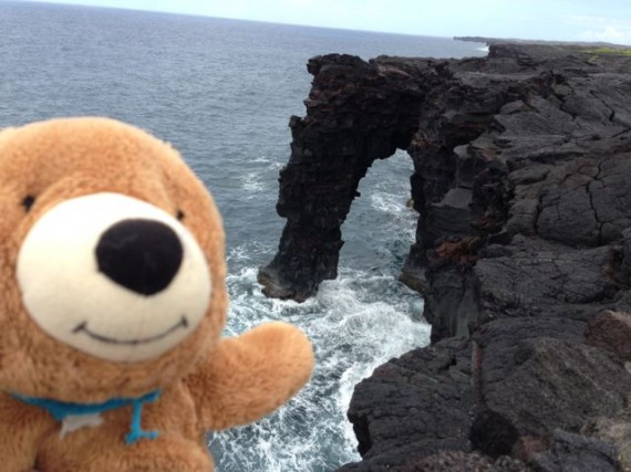 Teddy Bear at Volcanoes National Park shoreline