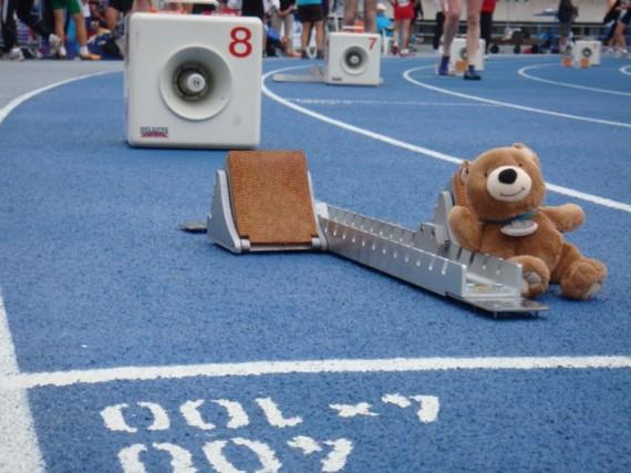 Teddy Bear in Track starting blocks in Lane 8