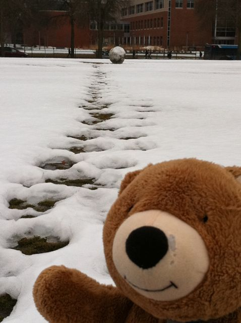 Jack the Bear and the giant snowball