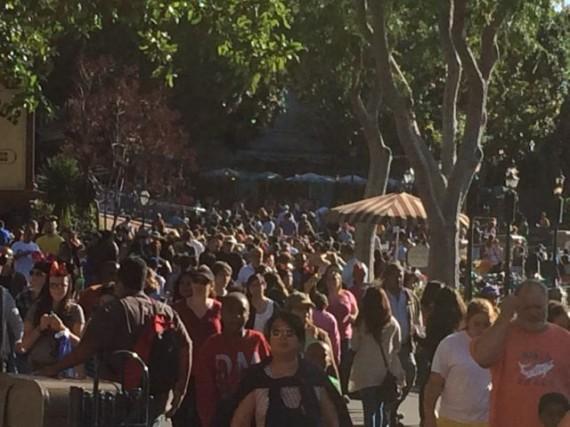 Disneyland photo of Spring Break attendance