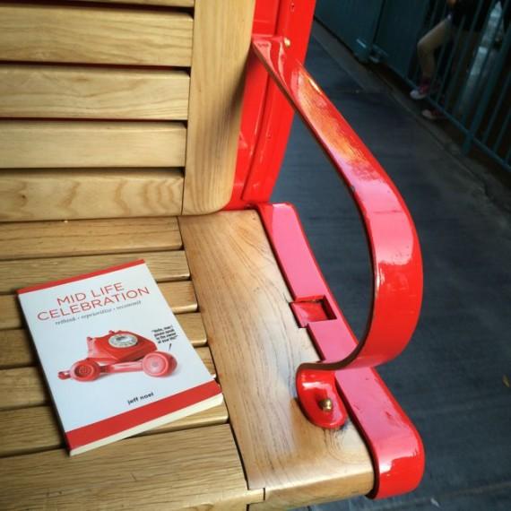 Midlife Celebration the book on Disneyland Train seat