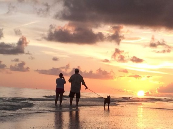 Pet Family on Sanibel Beach at Sunset