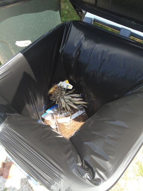 Dog food tossed into trash can