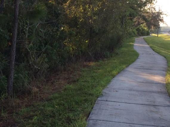 Sidewalk near Walt Disney World