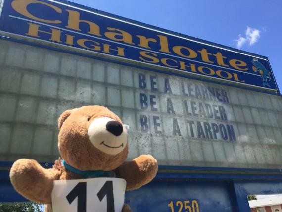 Charlotte High School banner