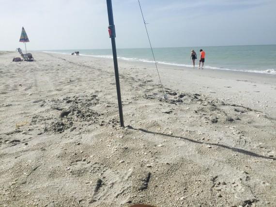 Mitchell's Sand Castle's Beach