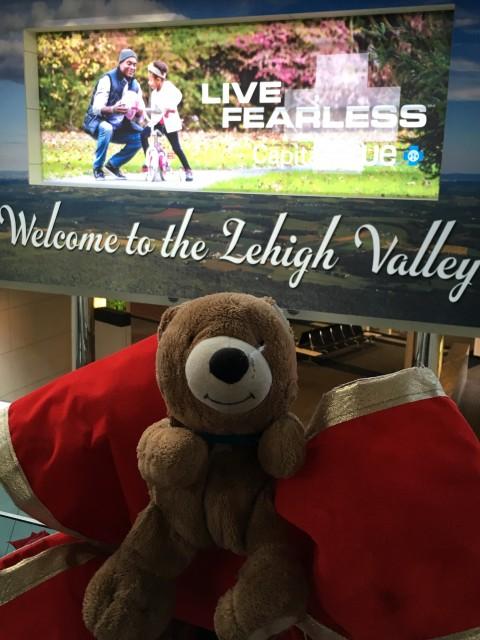 Traveling Teddy Bear