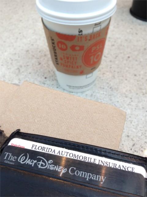 Business traveler wallet