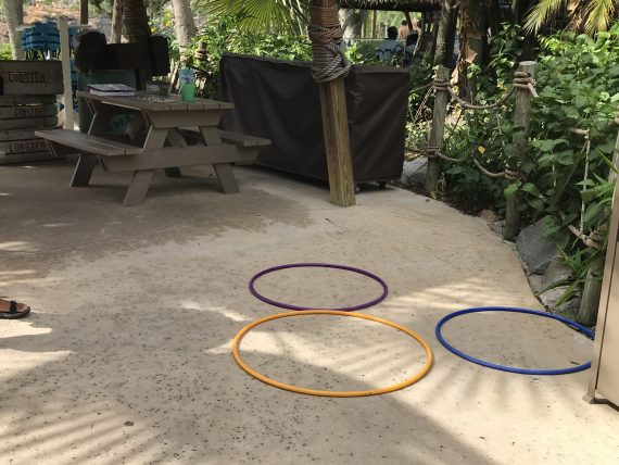 Hidden Mickey at Typhoon Lagoon