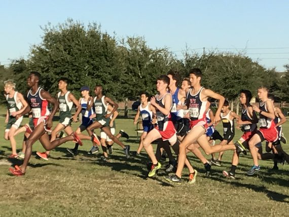 WPS 2016 Boys cross country