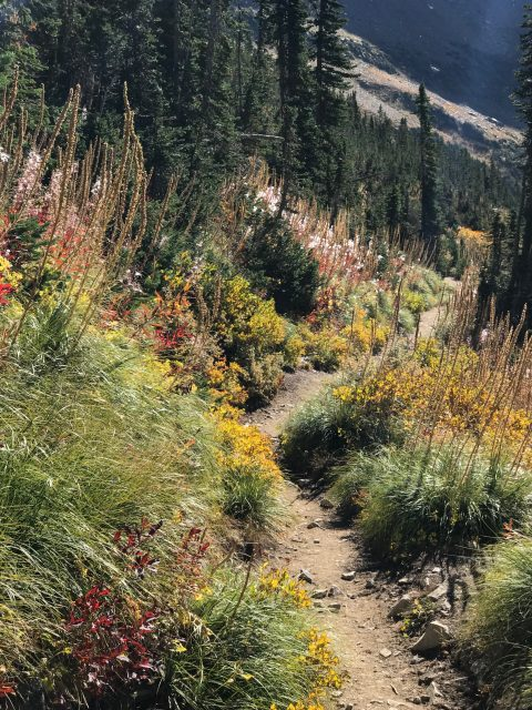 Highline Trail in September