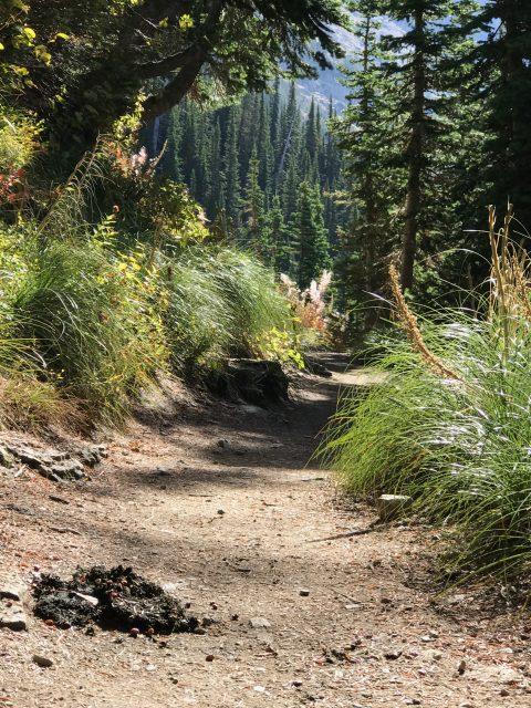 Highline Trail in September