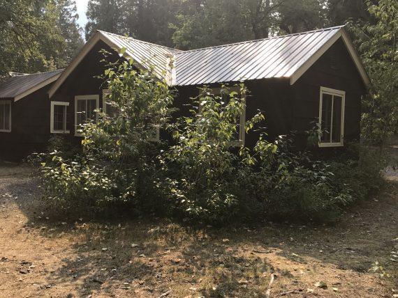 Apgar Village Lodge Cabins