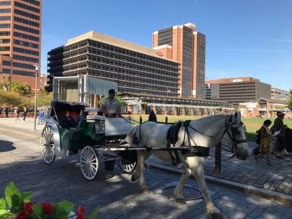 Horse and Buggy ride in Philadelphia