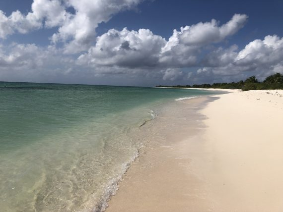 Punta Sur eco beach cozumel