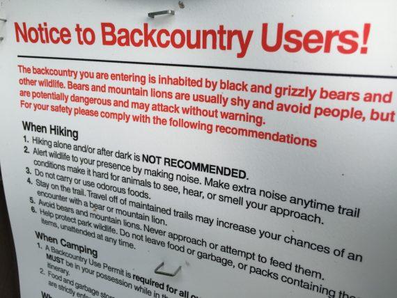 Grizzly Bear warning Glacier