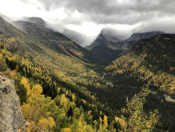 Glacier National Park fall foliage