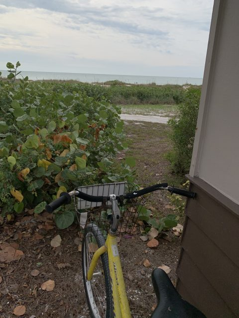 Bicycling on Sanibel Island