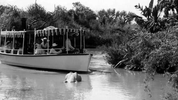 Disneyland Jungle Cruise vintage photo