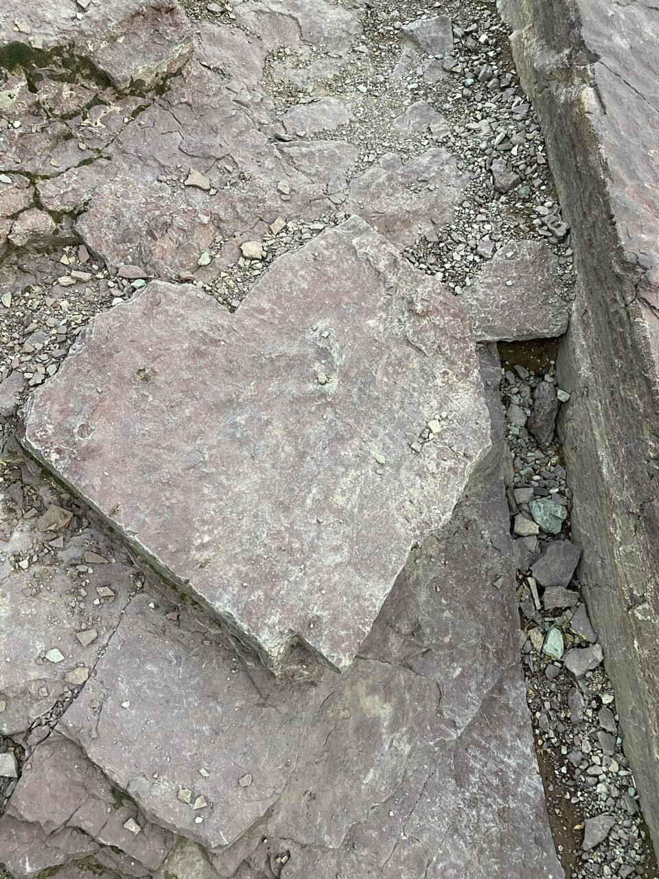 heart shaped rock on hiking trail