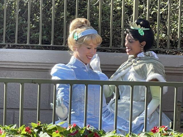 Cinderella and Princess Tiana