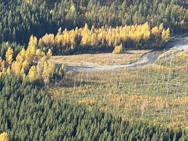 Mountain creek in Fall