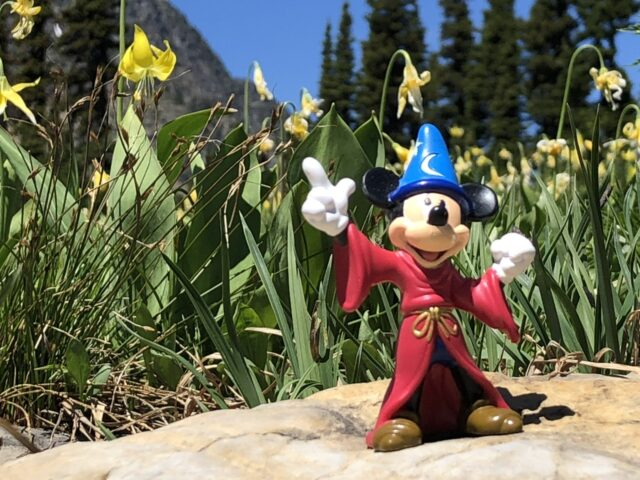 Fantasia Mickey Mouse toy in flowers